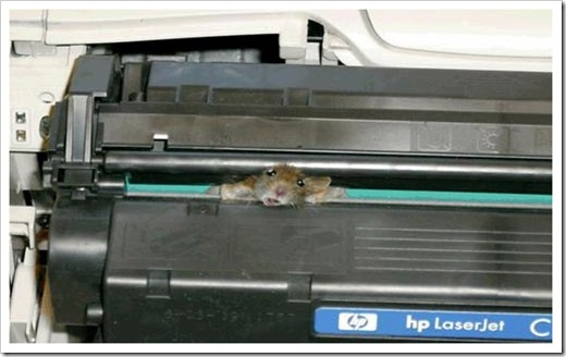 Mouse-in-printer